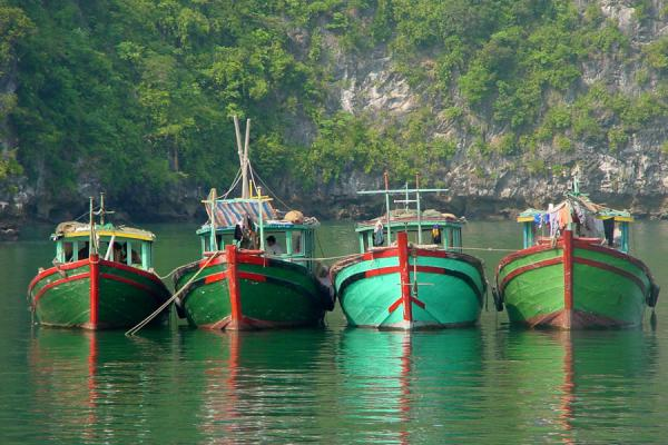 Picture of Vietnam (Boats in Halong Bay)