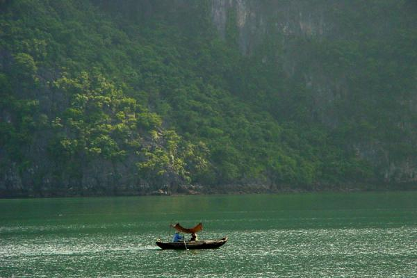 Picture of Halong Bay (Vietnam): Small boat in Halong Bay