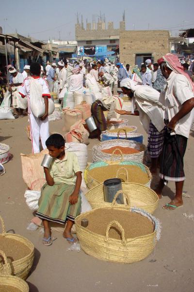 Picture of Bait al Faqih (Yemen): Selling grains at the Bait al Faqih market