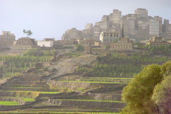 Picture of Haraz Mountains (Yemen): Al Hajjara and terrace fields