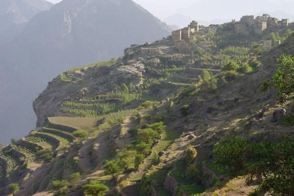 Picture of Haraz Mountains (Yemen): Village and terraces in Haraz Mountains