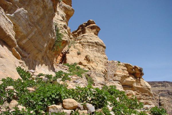 Picture of Kawkaban (Yemen): Kawkaban mountain