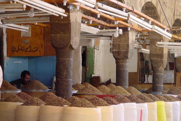 Picture of San'a suq (Yemen): Raisin suq in San'a
