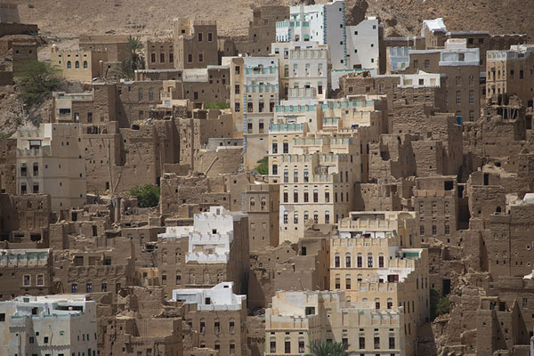 Foto di Mud bricks being dried by the sun in Wadi DawanWadi Dawan - Yemen