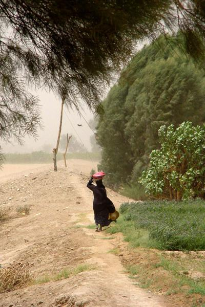 Picture of Yemeni People (Yemen): Woman in sandstorm near Marib