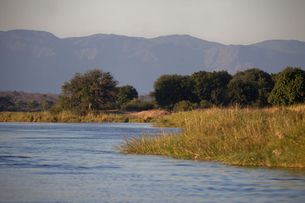 The Zambezi river with trees and mountains in the background | Kiambi Lower Zambezi | Zambie