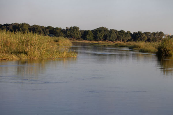Foto van Stretch of the Zambezi close to the Zimbabwean borderLower Zambezi - Zambia